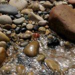 Virgin Stones, Zion National Park