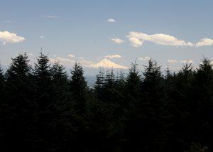 Mount Hood Floating on the Horizon
