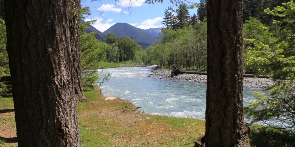 On the bank of the Elwha River, Olympic National Park, Washington