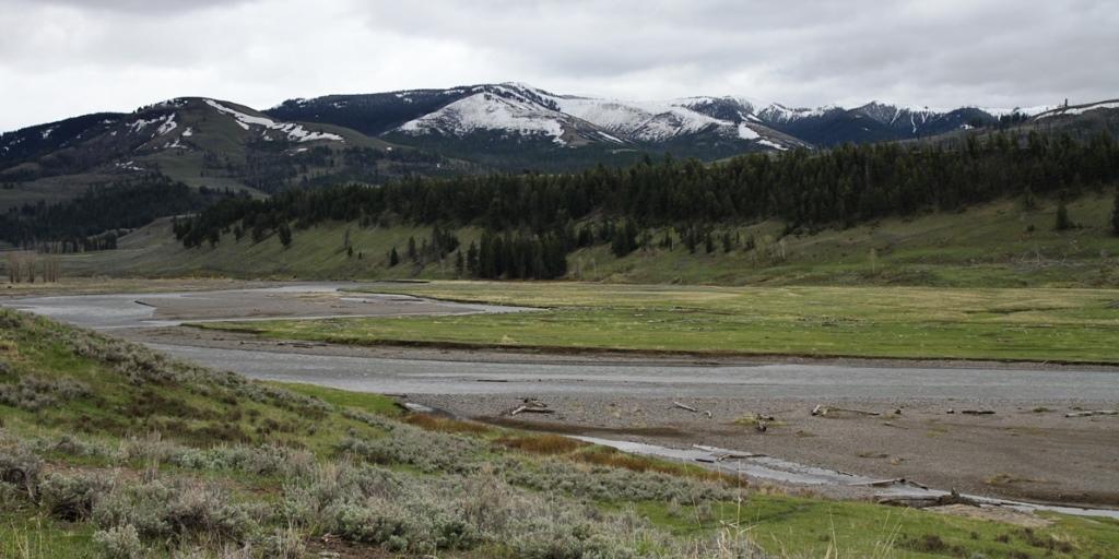 Lamar Valley, Yellowstone National Park