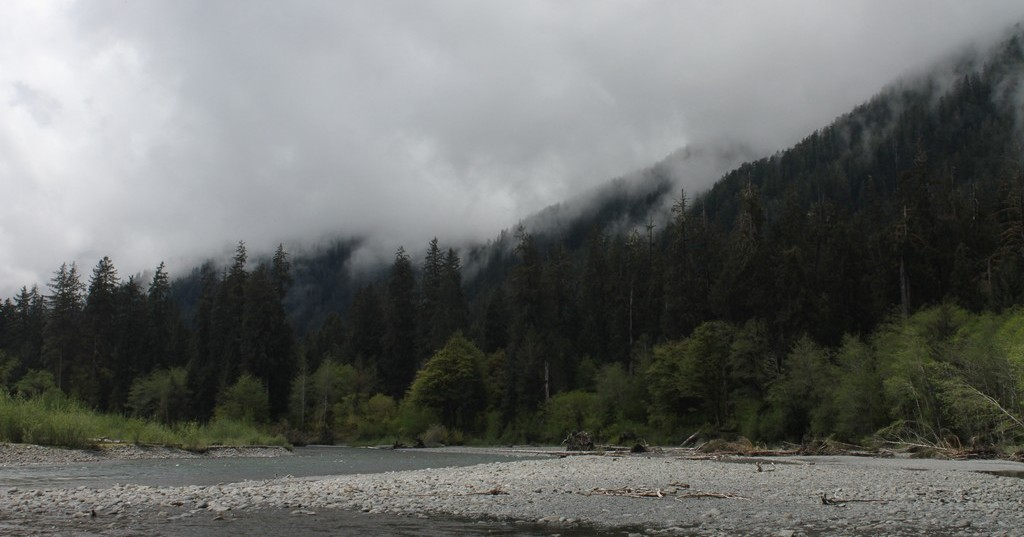 Clouds above Hoh River