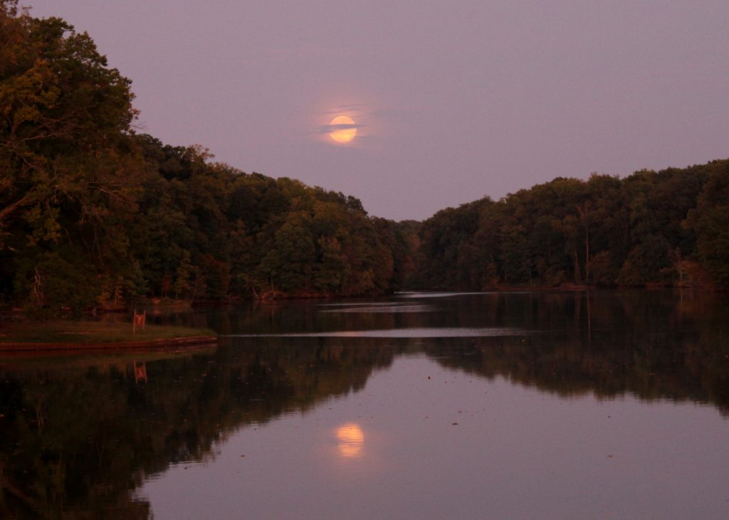 Moonrise over Poplar Tree Lake