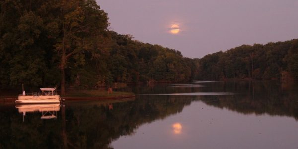 Moonrise over Meeman-Shelby Forest