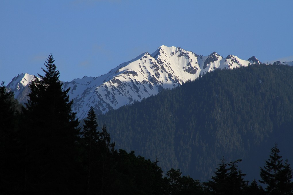 Mountain vista, Olympic National Park